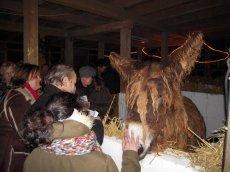 Weihnachtliches Stallsingen